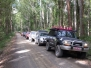 Barrington Tops 4wd Tour