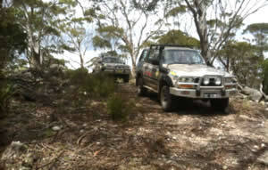blue mountains 4wd tour